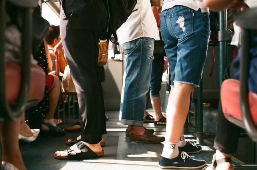 Zorganizowany transport osób – co to takiego?